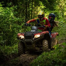 atv-riders-in-forest